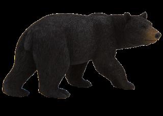 PROM TREFL-Niedźwiedź czarny F7112