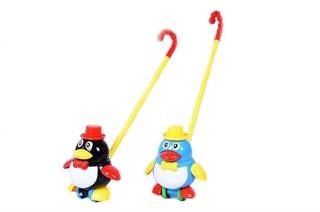 Pchacz pingwin