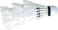 PROM Lotki do badmintona X-SK-11 AR