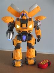 Robot 67474-HM012089 HH